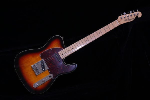 Bill Lawrence Swampkaster Tele